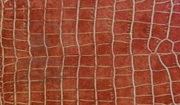finiture vera pelle stampata cocco marrone